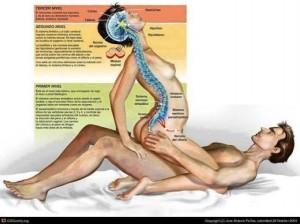 Beneficii ale sexului